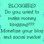 NEW Blogger Sponsorship to Make Money!