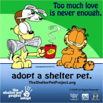 June is Adopt a Cat Month! Twitter Party TODAY 3pm! #ShelterPetLove
